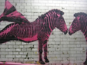 pink zerbas